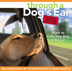 Driving Edition: Music to Calm your Dog in the Car
