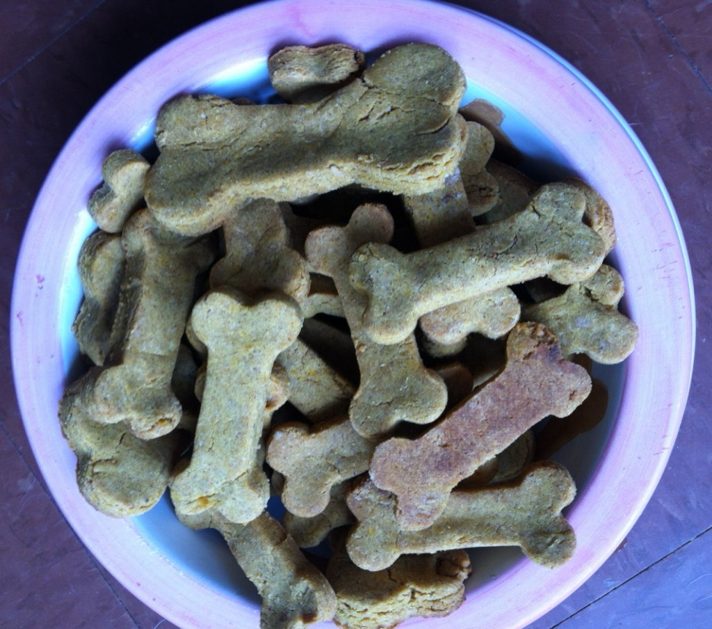 More Dog Cookies