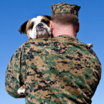 Marine carrying dog cropped