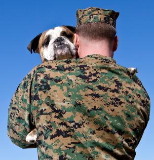 Marine carrying dog cropped