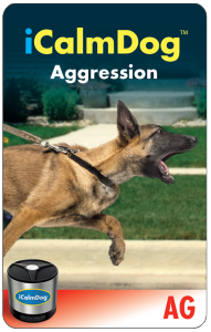 micro-card-icd2-aggression