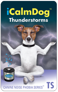 micro-card-icd2-thunderstorms