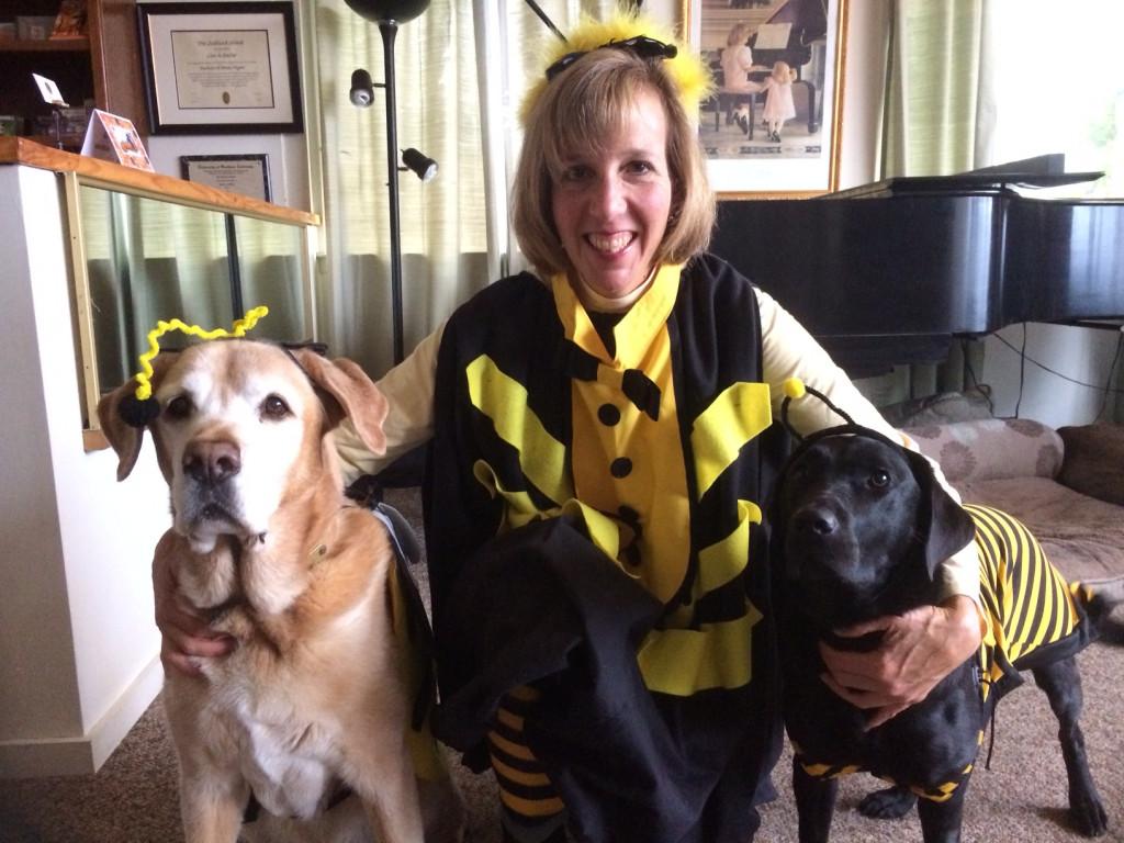 Bumblebee Family