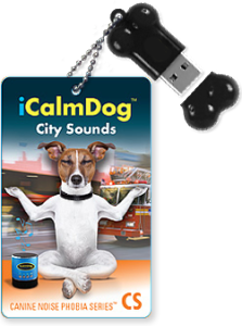 City-Sounds-iCD-Bone-and-Cards
