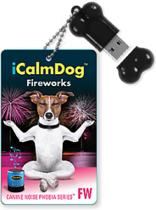Fireworks-iCD-Bone-and-Cards
