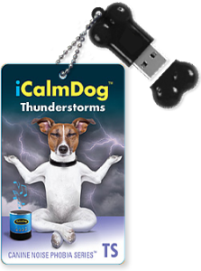 Thunderstorms-iCD-Bone-and-Cards