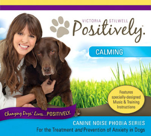 Canine Noise Phobia: Calming