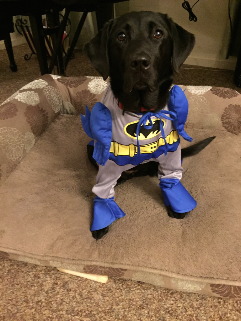 Gina Batman