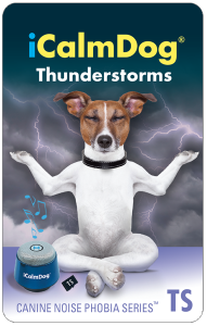 micro-card-icd3-thunderstorms