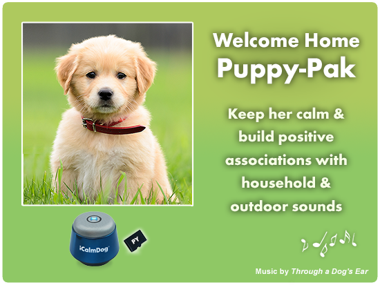 puppy training and prevention of noise phobias and anxiety for puppies icalmpet pack for dog training