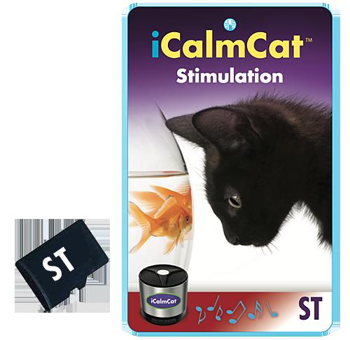 iCC-microcards-stimulation
