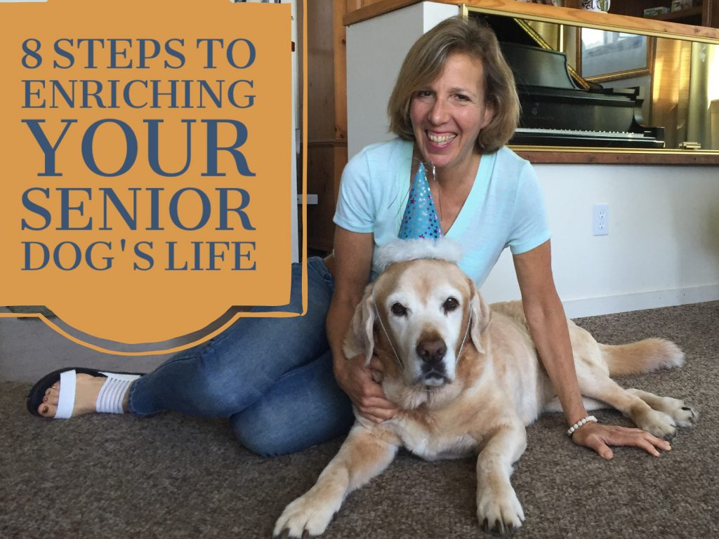 8 steps senior dogs
