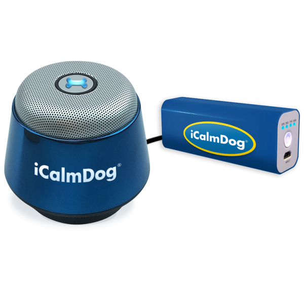 icd-blue-dot-with-blue-charger
