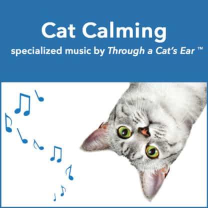calming cat music by through a cat's ear