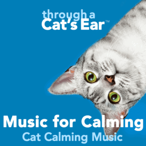 Through a Cat's Ear, 3-hrs of Music for Calming cats