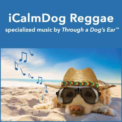 Reggae music for dogs