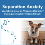 help relieve separation anxiety in dogs with calming music