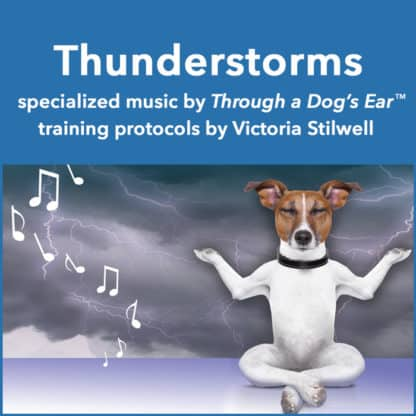 music to ease thunderstorm anxiety in dogs