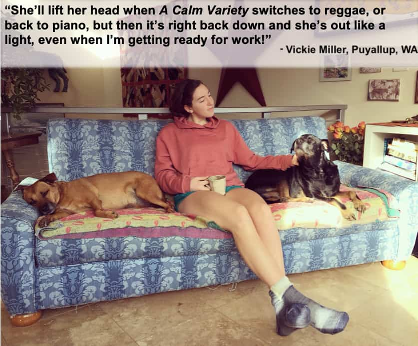 testimonial that our dog calming music really works