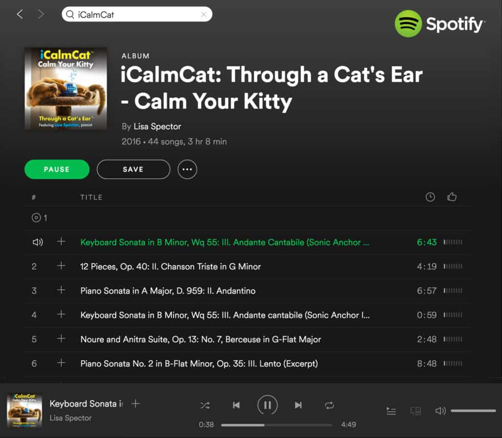 Streaming cat music with the calming cat music programs of iCalmCat is easy, and available through Spotify, as pictured here, and Apple Music.