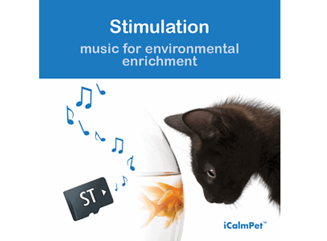 Through a Cat's Ear icalmpet icalmcat stimulation portable speaker sound card music for environmental enrichment