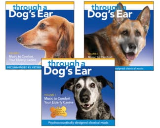 Click here to view and purchase the Comfort Your Elderly Canine Series (3-CD set)